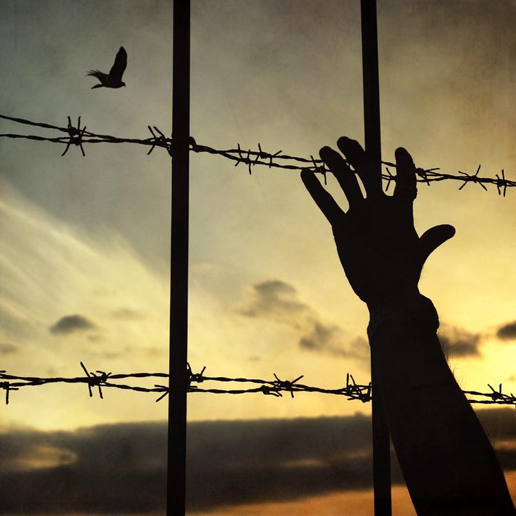 La prisión del odio