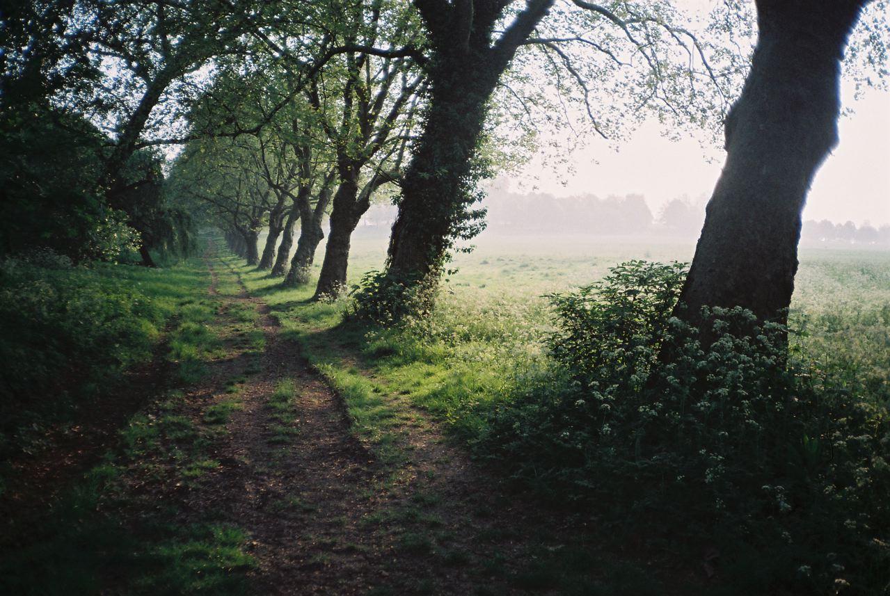 Hacer el camino sin ninguna intención o propósito