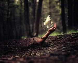 mano-saliendo-tierra-flor