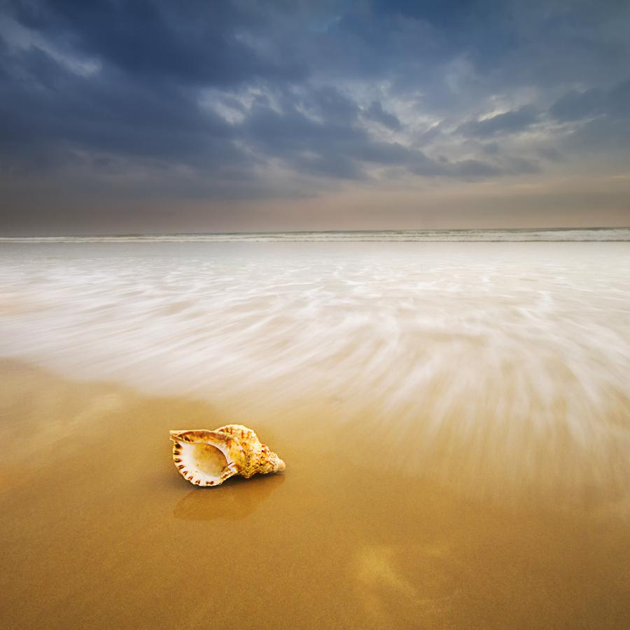 Nunca conocerás nuevos océanos