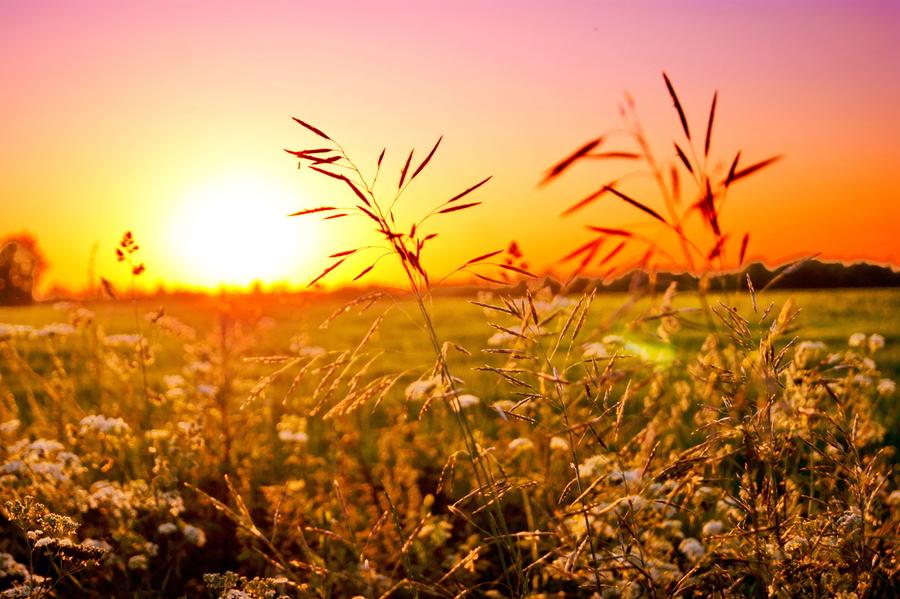 ¿Para qué valen los ejercicios espirituales?