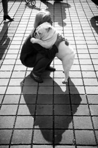 bull-dog-abrazo-persona