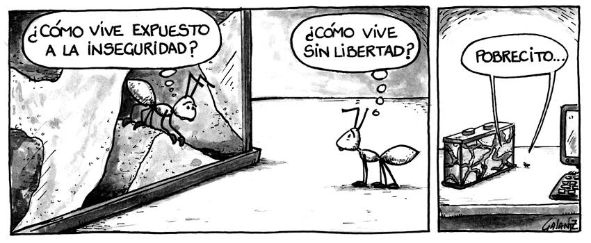 Libertad e inseguridad