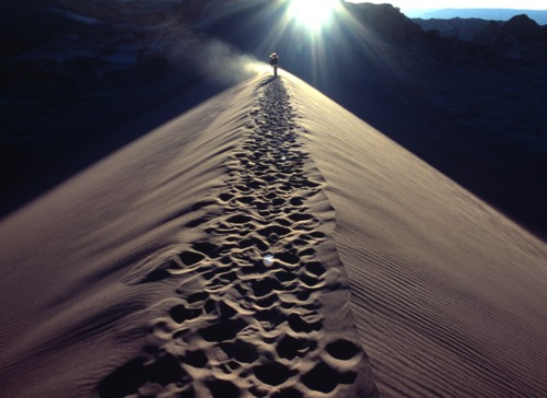 Goza el camino que es eterno
