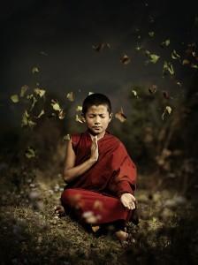 monje-budista-joven-hojas-volando