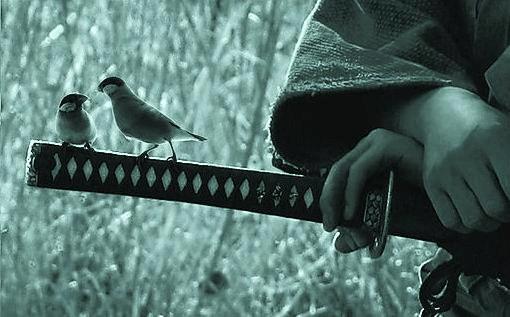 espada-samurai-pajaros